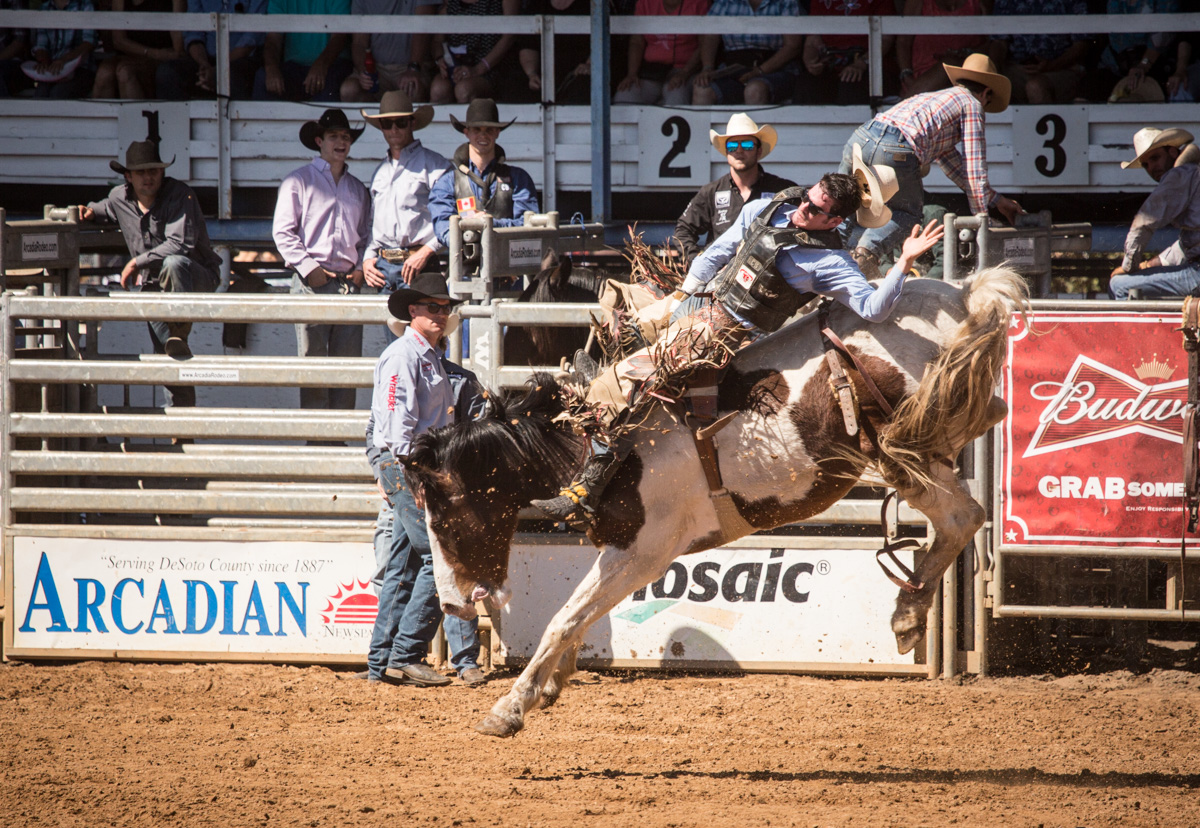 2017 March  Field Trip  Arcadia Rodeo